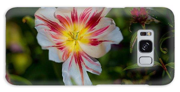 Starry Tulip Galaxy Case by John Roberts