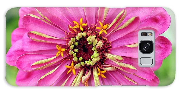 State Fair Zinnia Galaxy Case