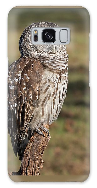 Stately Barred Owl Galaxy Case