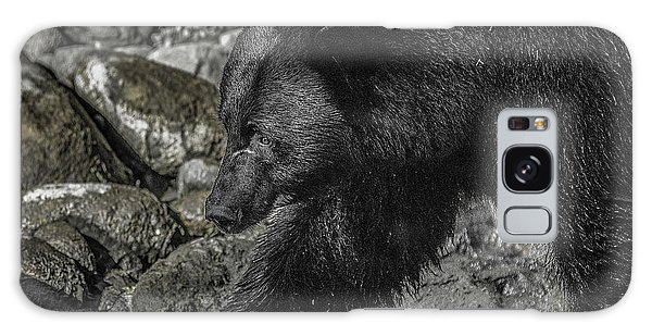 Stepping Into The Creek Black Bear Galaxy Case