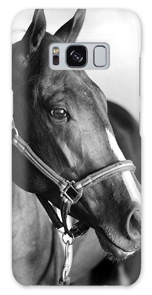 Horse And Stillness Galaxy Case