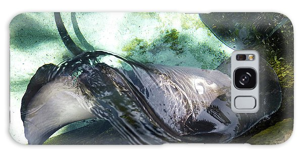 Galaxy Case featuring the photograph Stingray Wave by Francesca Mackenney