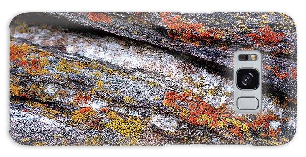 Stone And Lichen Galaxy Case