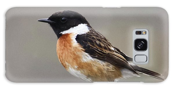 Stonechat Galaxy Case by Terri Waters
