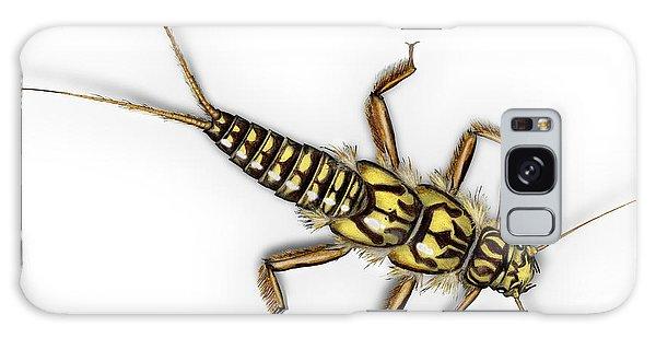 Stonefly Larva Nymph Plecoptera Perla Marginata - Steinflue -  Galaxy Case