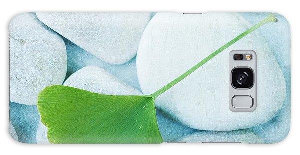 Stone Galaxy Case - Stones And A Gingko Leaf by Priska Wettstein