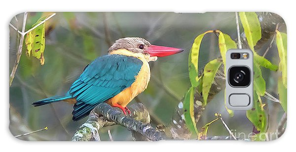 Stork-billed Kingfisher Galaxy Case