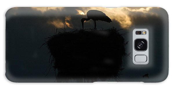 Stork With Evening Sun Light  Galaxy Case