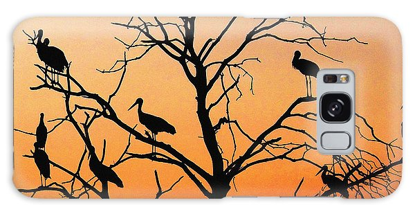 Storks In The Evening Sun Light Galaxy Case