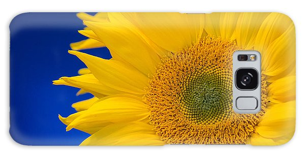 Striking Sunflowers Galaxy Case