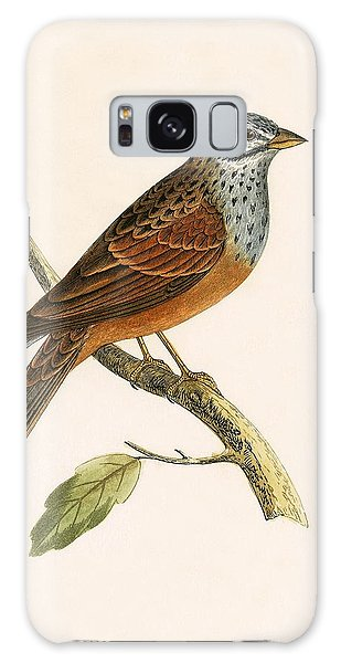 Striolated Bunting Galaxy Case