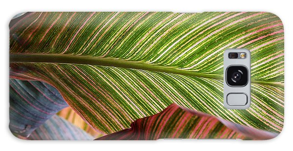 Striped Canna Lily Leaves Galaxy Case