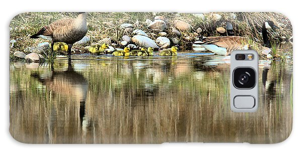 Gosling Galaxy Case - Strolling Along The Bank by Adam Jewell