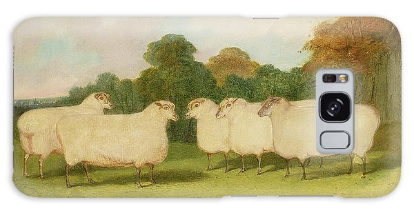 Sheep Galaxy Case - Study Of Sheep In A Landscape   by Richard Whitford