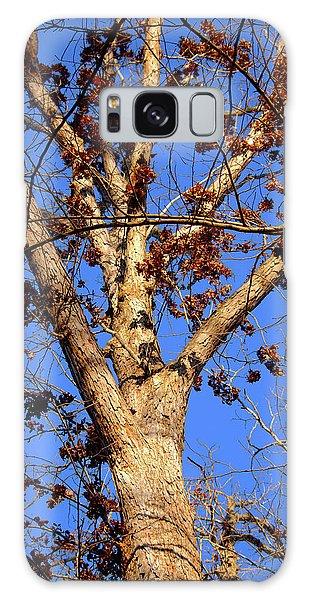 Stunning Tree Galaxy Case