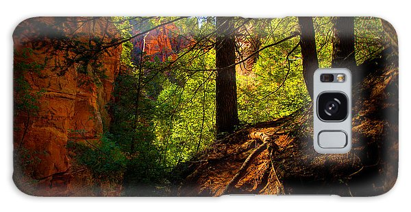 Outdoor Galaxy Case - Subway Forest by Chad Dutson