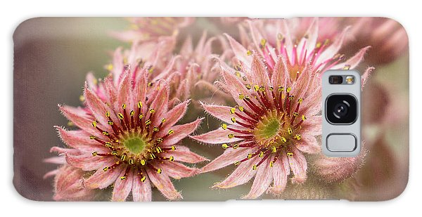 Succulent Flowers - 365-100 Galaxy Case