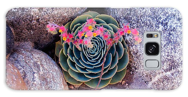 Succulent Flowers Galaxy Case by Mark Barclay