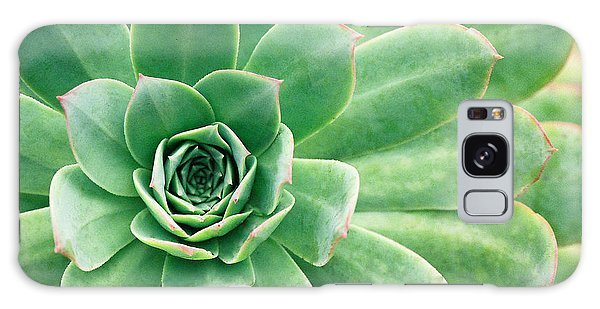Succulents II Galaxy Case