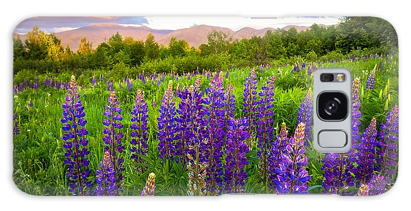 Sugar Hill Lupines Galaxy Case
