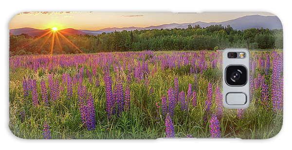 Sugar Hill New Hampshire Lupine Galaxy Case