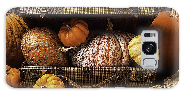 Gourd Galaxy Case - Suitcase Full Of Pumpkins by Garry Gay