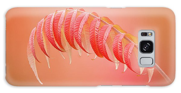 Sumac Branch Galaxy Case
