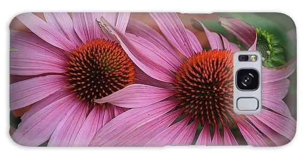 Summer Beauties - Coneflowers Galaxy Case