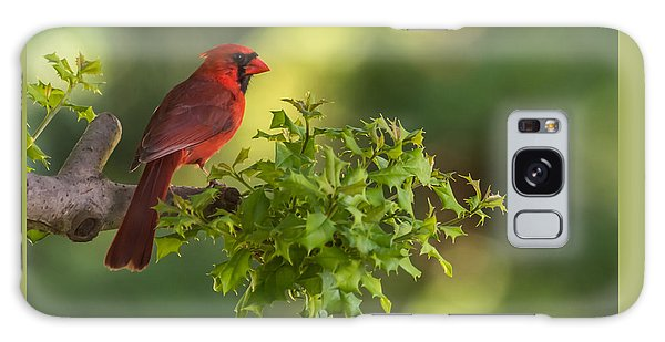 Summer Cardinal New Jersey Galaxy Case