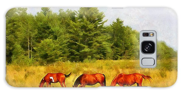 Summer Hay Burners Galaxy Case