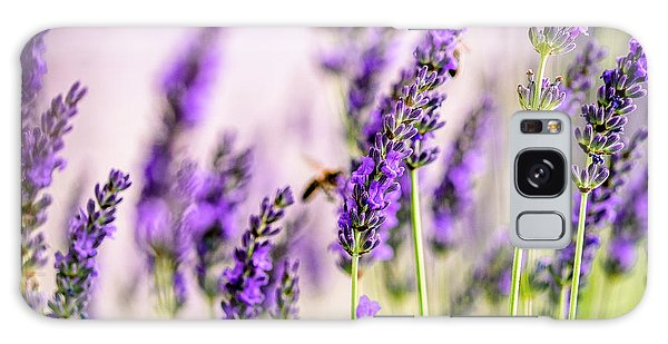 Herbs Galaxy Case - Summer Lavender  by Nailia Schwarz