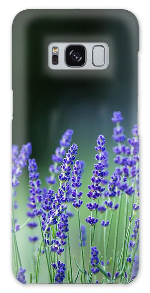 Summer Lavender Galaxy Case