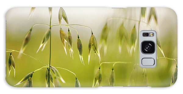 Farmland Galaxy Case - Summer Oat by Nailia Schwarz