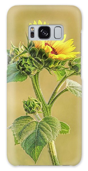 Galaxy Case featuring the photograph Summer Sunflower Floral by Jennie Marie Schell