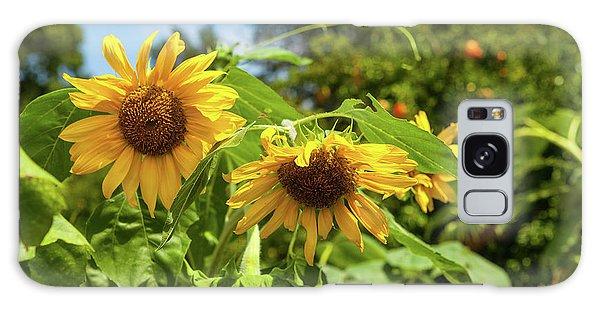 Summer Sunflowers Galaxy Case