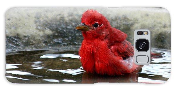 Summer Tanager In Bird Bath Galaxy Case