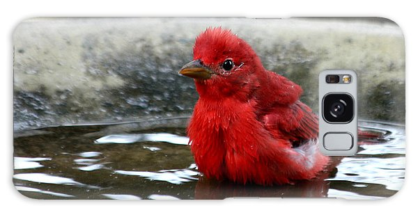 Summer Tanager In Bird Bath Galaxy Case