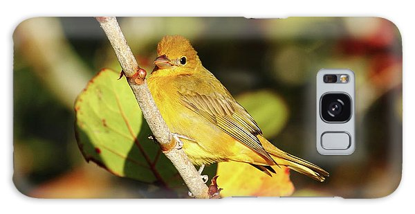Summer Tanager Galaxy Case