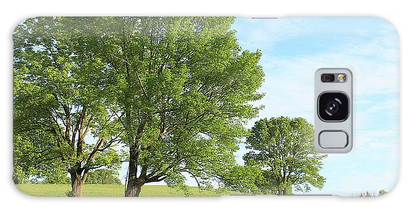 Summer Trees Galaxy Case