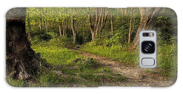 Price Lake Trail - Blue Ridge Parkway Galaxy Case