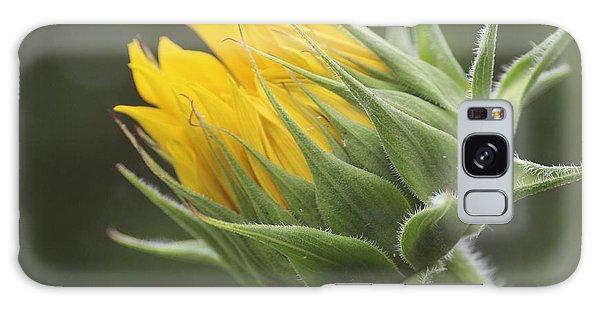 Summer's Promise - Sunflower Galaxy Case