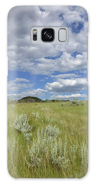 Summertime On The Prairie Galaxy Case
