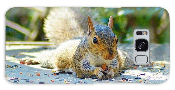 Sun Bathing Squirrel Galaxy Case