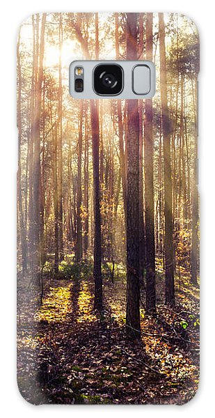 Sun Beams In The Autumn Forest Galaxy Case