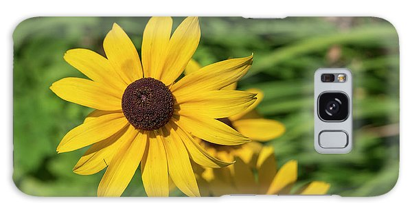 Sun Drenched Daisy Galaxy Case