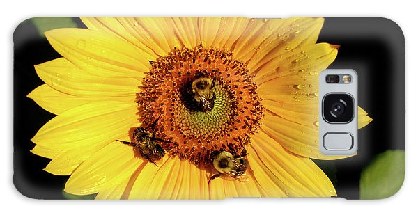 Sunflower And Bees Galaxy Case by Nancy Landry