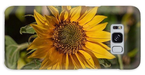 Sun Flower Galaxy Case by Lynn Hughes