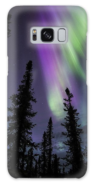 Sun-kissed Aurora Above The Spruces Galaxy Case
