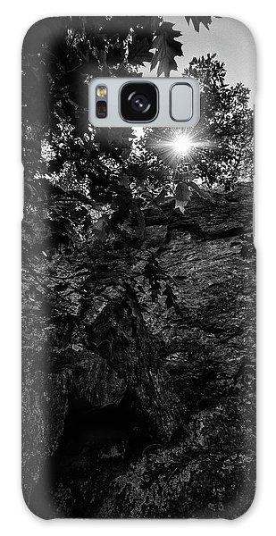 Sun Through The Trees Galaxy Case by Paul Seymour