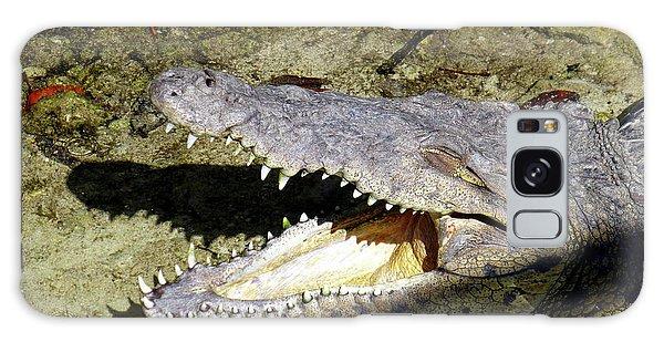 Sunbathing Croc Galaxy Case